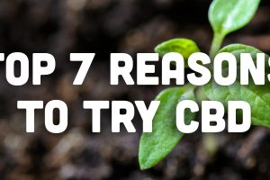 Top 7 Reasons to Try CBD