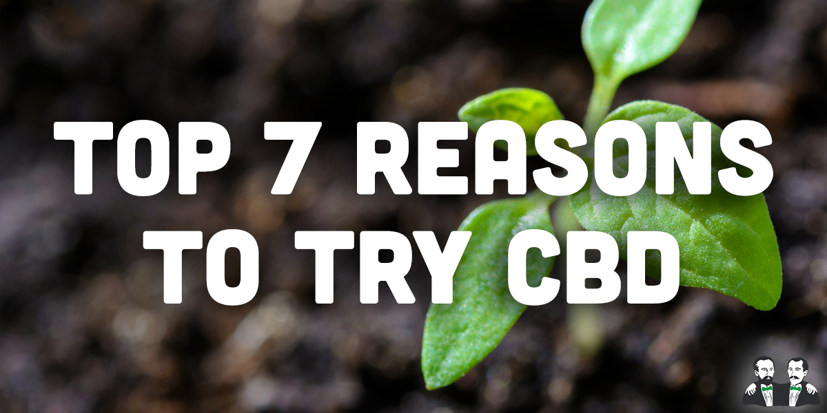 Lists, Top 7, Reasons to Try CBD