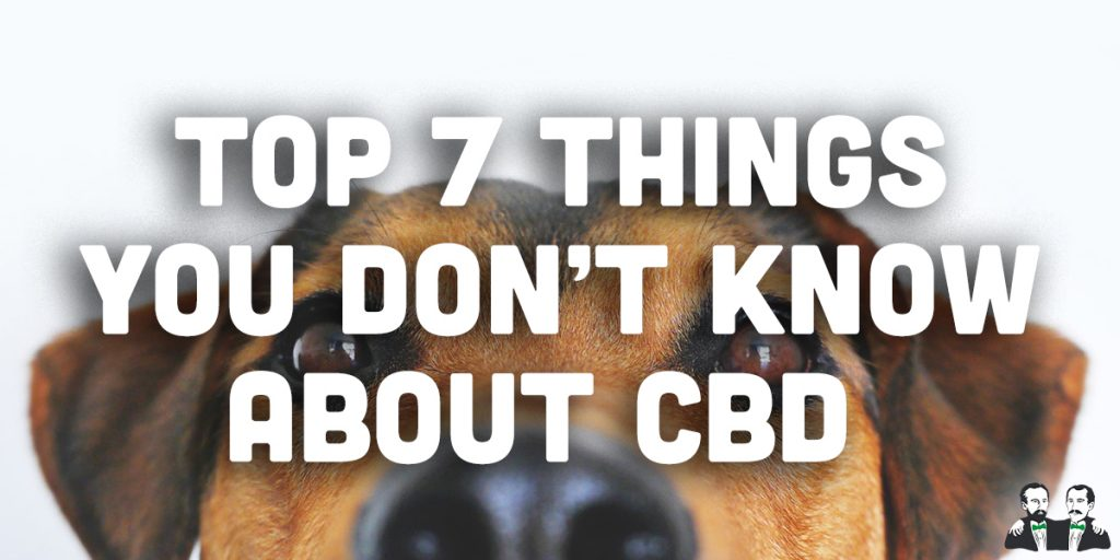 top 7 list, things didn't know about cbd